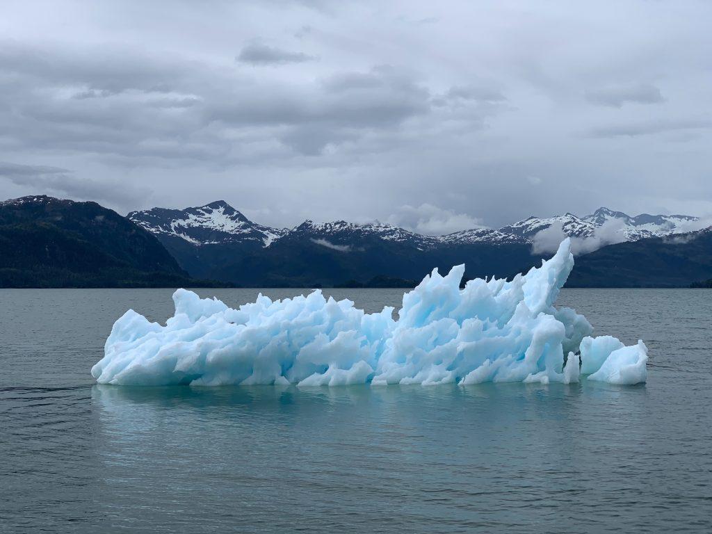 klímakatasztrófa